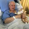 Szívszorító fotósorozat: egy haldokló bácsi utolsó kívánsága volt, hogy újra lehessen macskája – Így teltek a hátralévő napjai