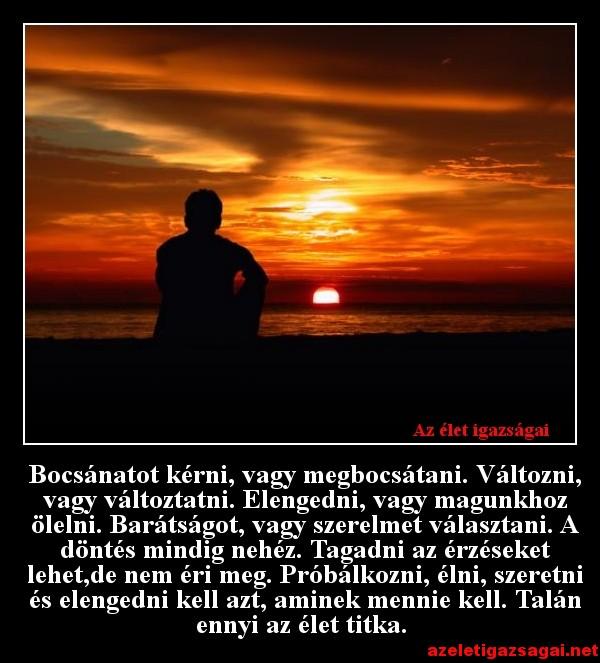 szerelmes bocsánat idézetek Bocsánatot kérni, vagy megbocsátani