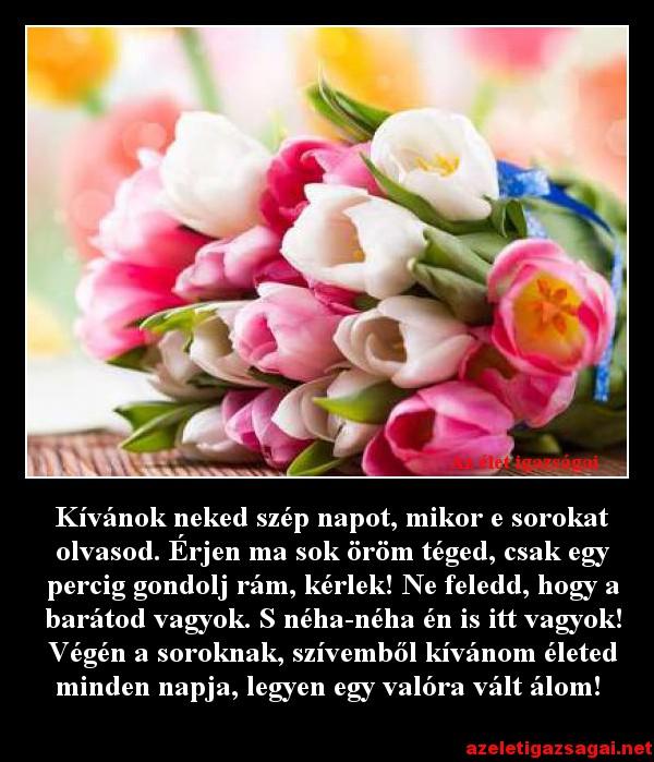 Kívánok neked szép napot